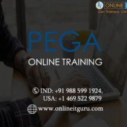 PeGa(1)