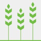 Agriculture organization Farm Africa