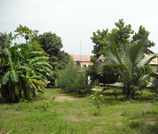 sunshine_guesthouse_gambia