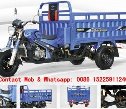 Cnzipstar business tricycle factory
