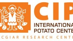 International Potato Center CIP
