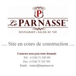 site-en-cour-de-construction-parnasse