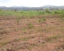 Land for sale in Ghana Accra