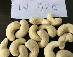 Raw-Cashew-Nuts-W320-Cashew-Nuts-WW450
