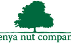 The best Kenya Nut Company