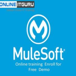 Boost your career with Mulesoft Online course