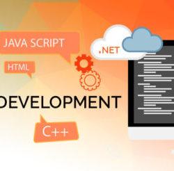 web-development-acemind-tech