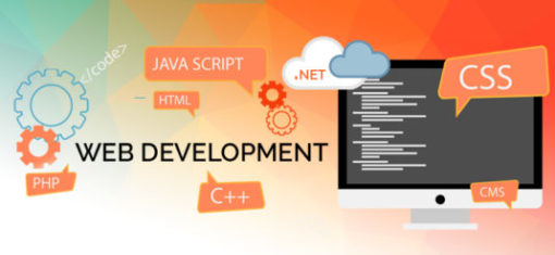 web-development-acemind-tech