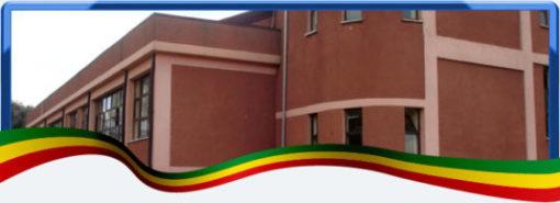 sandford international school