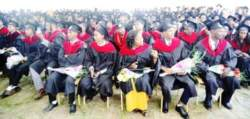 Dilla University