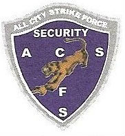 All city strike force security