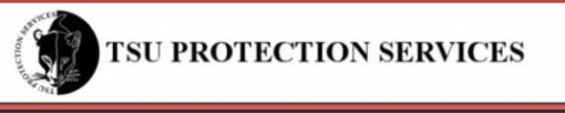 Tsu Protection Service