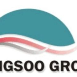 Kingsoo Group Limited