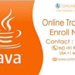 www.onlineitguru.com