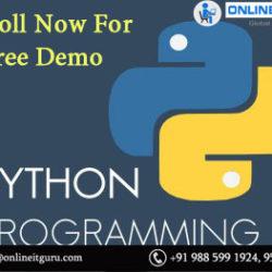 Python Online Training India