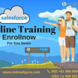 sales force Online training 24-01-2018