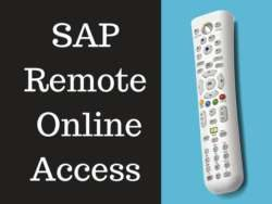 SAP Remote Online Access