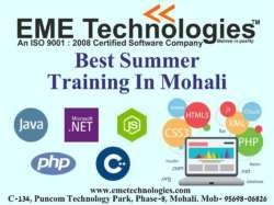 best summer training in mohali