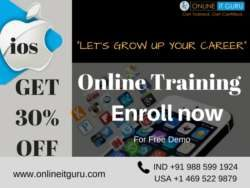ios Online Training 12-01-2018