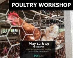 Poultry workshop