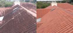roof-cleaning 1