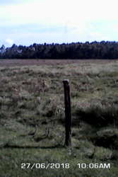kinamba 15 acres1