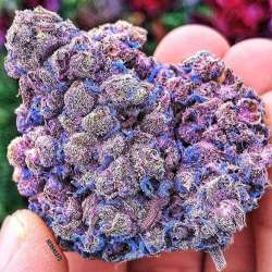 weed_cannabis_420___Bm1PFmenO7b___