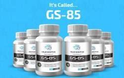 GS-85 5