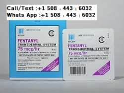 Fentanyl Patches  . . ..... ...